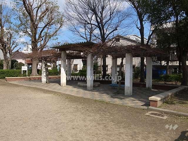 井高野公園6