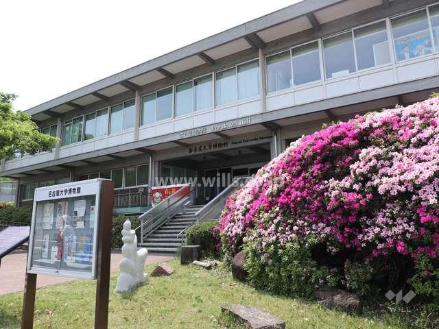名古屋大学博物館2