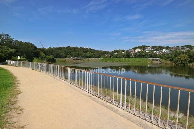 雨池公園と壇ノ浦公園1